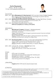 Resume Samples Grocery Store by Resume Examples For Beginners Makeup Artist Resume Sample Examples