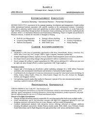Java Resumes Executive Resume