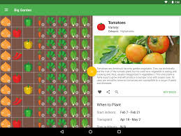 companion vegetable garden layout planter garden planner android apps on google play