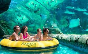 seaworld black friday deals theme park u0026 water park annual passes seaworld san antonio