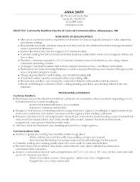 Sample Project Manager Resume Example   project management resume