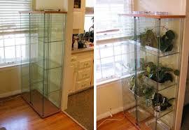 Ikea Glass Shelves by Ikea Glass Shelf Terrariums Apartment Therapy