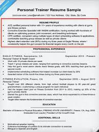 Sample Of Resume Skills And Abilities by How To Write A Summary Of Qualifications Resume Companion