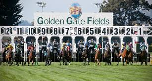 thanksgiving horse pictures events and tickets golden gate fields