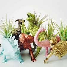 customize your own large dinosaur planter air plant
