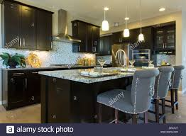 Model Home Decor by Contemporary Home Decor Decorating Ideas Kitchen Design