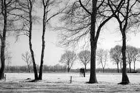 Free Home Decorating Catalogs Enchanting Fine Art Landscape Photography Black And White For