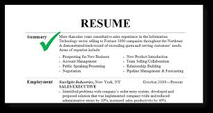 Retail Professional Summary Professional Summary Resume Examples For Software Developer