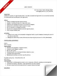 Legal Resume Sample by Legal Resume Formatting