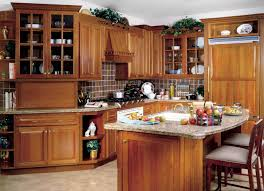 Kitchen Cabinet Wood Types Kitchen All About Solid Wood Kitchen Cabinets 2017 Collection