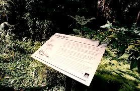 Brisbane City Botanic Gardens by Brisbane City Gardens Zandalus Net