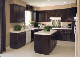 Restaining Kitchen Cabinets Painting Kitchen Cabinets Austin Tx Www Onefff Com