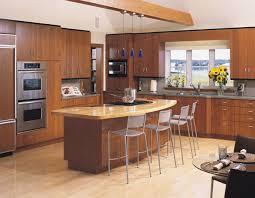 Kitchen Design Trends by Kitchen Modern Kitchen Design In India Amazing Kitchens Uk 2016
