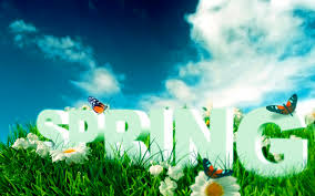 Image result for spring