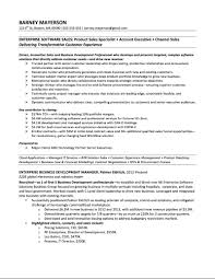 Best Executive Resume Format by Sample It Executive Resume Free Resume Example And Writing Download