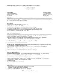 Best Executive Resume Format by Sales Resume Format Best Executive Resume Format Click Here To