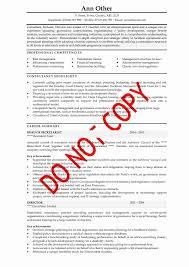 Sample Resume For Senior Manager by Cv Examples Executive Senior Management Cv Examples Cv Info