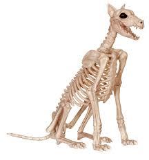 Halloween Skeleton Props by Amazon Com Crazy Bonez Skeleton Dog Badger Bonez Toys U0026 Games