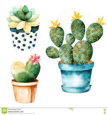 Succulents Pots For Sale by Watercolor Handpainted Cactus Plant And Succulent Plant In Pot