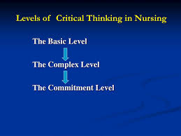 Figure   Conceptual framework of the Developing Nurses      Thinking model  culturally adapted for Brazil