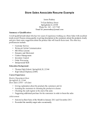 Retail Professional Summary Retail Job Experience On Resume