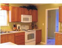 Kitchen Cabinets Inside Kitchen Perfect With Oak Cabinets Inside Modern Wood Loversiq