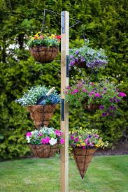 best 25 hanging plants outdoor ideas on pinterest cheap grow