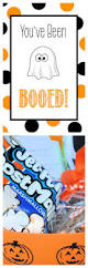 46 best you u0027ve been boo u0027d images on pinterest holidays halloween