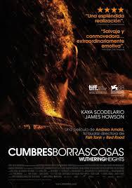 Cumbres Borrascosas (2011)