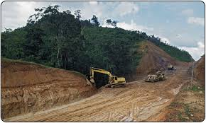The bloomtrigger project Drivers of deforestation