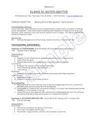 sample bank teller resume job application cover letter bank bank job application letter basic job appication letter legal resumed sample of bank teller resume with