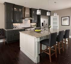 Kitchen Cabinets Thermofoil Thermofoil Cabinet Doors Kitchen Transitional With Gray And White