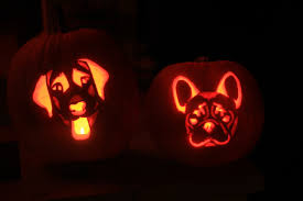 dog pumpkin carving stencils and pics of our bailey and bam o