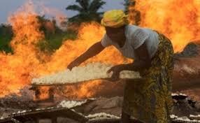 石油给尼日利亚带来了什么