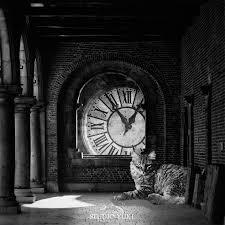 dark surreal photography alice in wonderland inspired