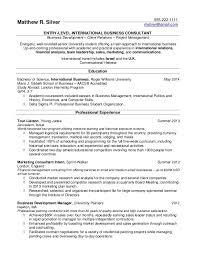 Simple Resume Examples For Students by Resume Examples For Experienced Professionals Traditional Resume