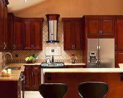 Home Depot Kitchen Cabinet Reviews by Kitchen Imposing 10x10 Kitchen Cabinets Home Depot Arresting