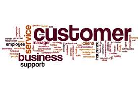 Essay on customer service in bpo fulfillment   Coursework TrustWatch