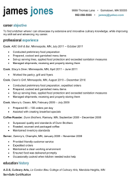 resume examples for chefs professional resume pictures free resume example and writing sponsor