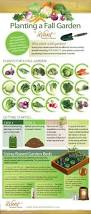 520 best gardening infographics and diagrams images on pinterest