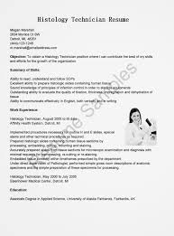Civil Engineer Technologist Resume Templates Avionics Resume Resume Cv Cover Letter