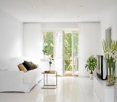 white small minimalist living room with houseplants creating a