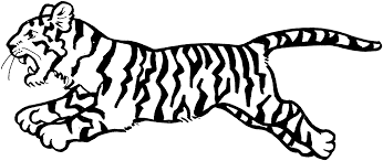 nice tiger coloring pages 5 4242