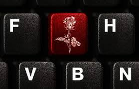 Illustration of red rose on keyboard