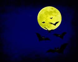 scary moon background scary halloween hd wallpaper wallpapersafari