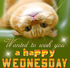 Sending Happy Wednesday Wishes