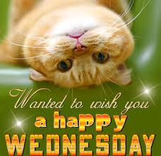 Sending Happy Wednesday Wishes