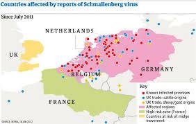 nombre - Virus de Schmallenberg Images?q=tbn:ANd9GcSzduXJ3cd-8c1j0vm940AfYZSqKUI_2ALY1KwbgRBgOqXY4OqL-w