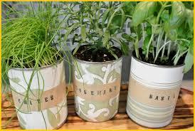 indoor garden kit indoor gardening u0026 hydroponics indoor herb