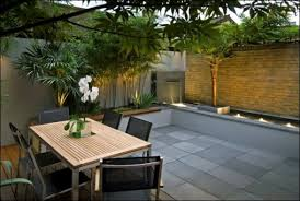 Narrow Backyard Design Ideas Inspiring Well Narrow Backyard Ideas - Contemporary backyard design ideas